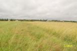 MALAWA – 19ar – rolna – 8 157zł/ar