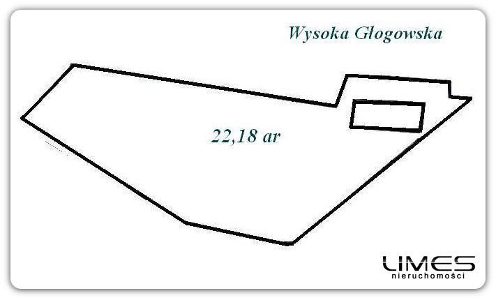 Wysoka Głogowska -22,18 ar- działka ze starym domem