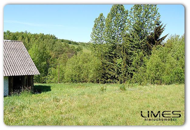 Gwoźnica Górna – 50ar – działka z domem drewnianym