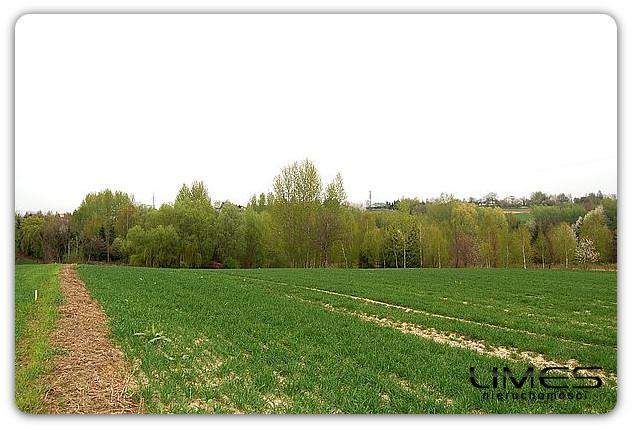 Kielanówka – 45 ar – działka rolna