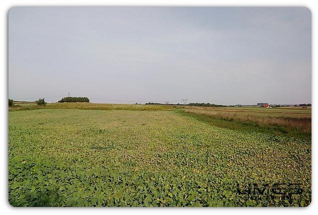 LUTORYŻ – 22 ar – działka rolna