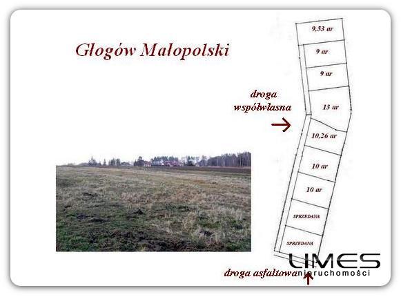 GŁOGÓW Małopolski – 10 ar – działki budowlane z WZ